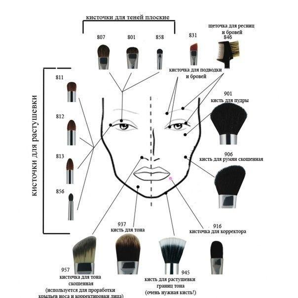 Как разобраться в кистях для макияжа глаз?