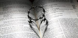 Любовь приносит боль?