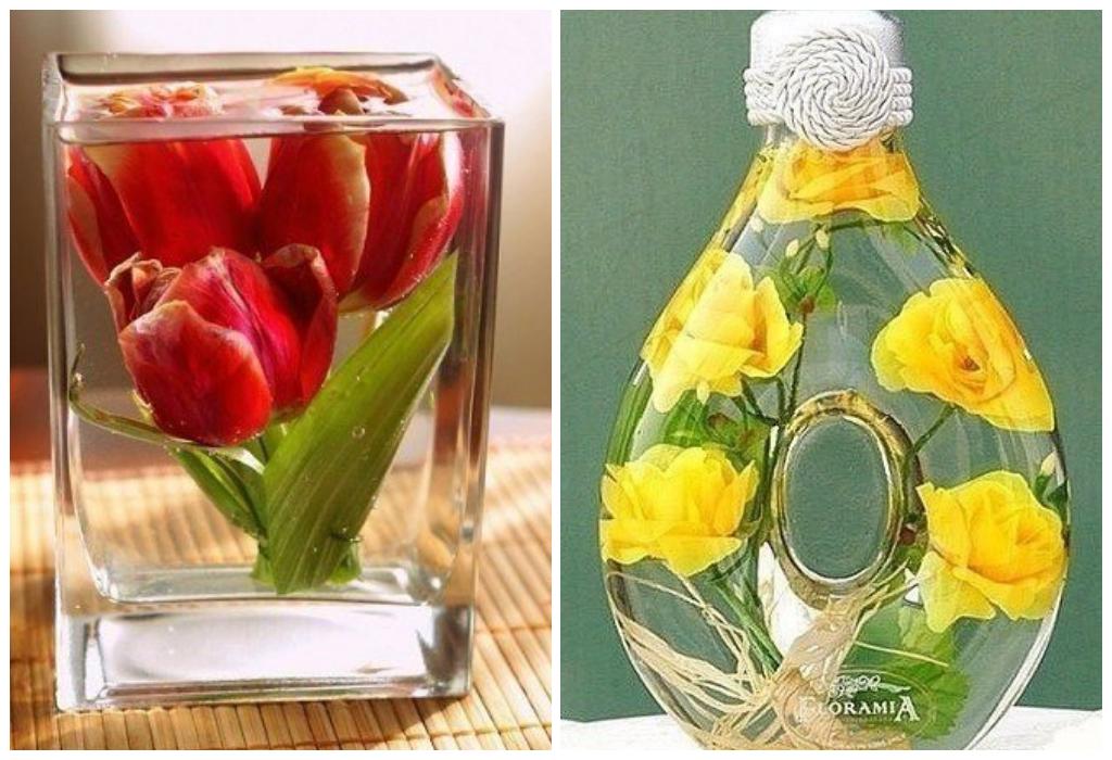 рецепты картинки цветы в глицерине основные культуры северо-востоке