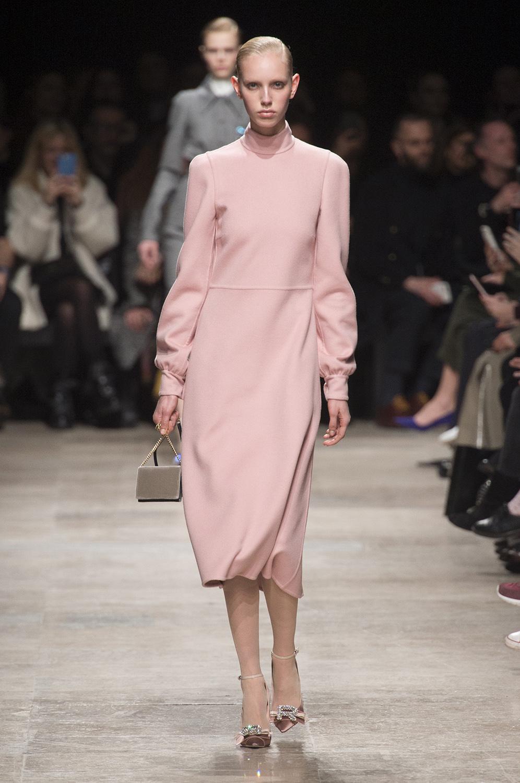 Самые модные цвета зимы и осени 2017 Балетная туфелька